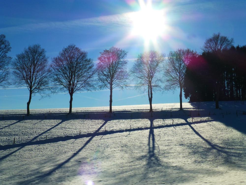 unter linden winter